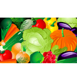 vegetable background vector image