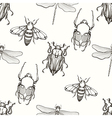 Hand drawn engraving Sketch of Scarab Beetle May vector image