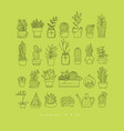 icon plants in pots day light green vector image