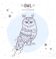 owl fairy vector image