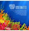 Underwater Corals Poster vector image