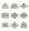 Collection of frames and design elements vector image