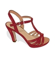 Sketch of women red shoe on a white background vector image