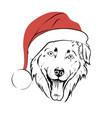 dog in santa hat vector image