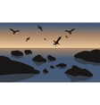 Silhouette of rock and bird in beach vector image
