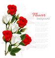 beautiful getting card with colorful roses vector image
