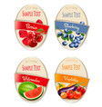 four fruit vegetables and berries labels vector image vector image