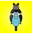 Panda racer in helmet on scooter Hand drawn in vector image