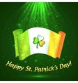 Celtic clover on Irish flag in magic lights vector image vector image