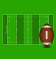 Football field American football ball vector image