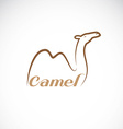 image of an camel design vector image