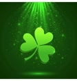 Green clover in the magic light background vector image vector image