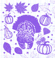 Thanksgiving day objects collection vector image