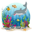 dolphin and fish in the sea vector image