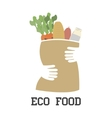 eco food vector image