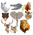 Set of animal heads vector image