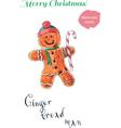 Gingerbreadman vector image