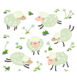sheeps set vector image
