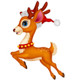 Cute deer cartoon with red hat vector image