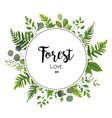 Floral invite card design with green eucalyptus vector image