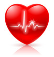 Shiny red heart with cardiogram isolated on white vector image