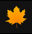 leaf isolated on dark transparent vector image