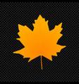 leaf isolated on dark transparent vector image