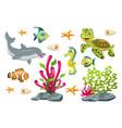 set of cartoon marine animals vector image
