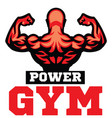 bodybuilder back muscle vector image vector image