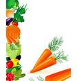 vegetables carrots vector image