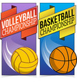 Basketball and volleyball banners isolated on vector image