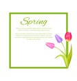 spring poster with text in frame colorful bouquet vector image