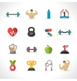Bodybuilding Icons Set vector image