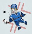 Hockey washer vector image