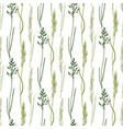 wildflowers seamless pattern background eco print vector image