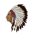 Single American Indian In Profile vector image