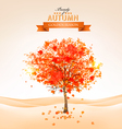 Autumn tree with orange leaves vector image vector image