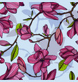 flowering magnolia pink color hand drawn vector image