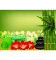 background for spa with bamboo vector image