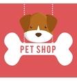 Pet shop center icon vector image