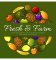 fruits banner Fresh farm fruit flat icons vector image