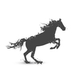 Abstract Ink Splashes Horse vector image