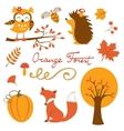 Orange forest colurful collection vector image