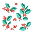 Christmas mistletoe holiday set vector image vector image