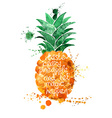 Watercolor of isolated pineapple fruit vector image