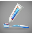 Toothbrush And Toothpaste Design Icons vector image
