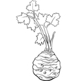 celery vegetable cartoon for coloring book vector image vector image
