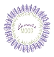 decorative lavender frame vector image