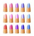 Nail polish in different hues vector image