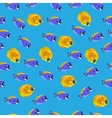 Golden Butterflyfish pattern vector image